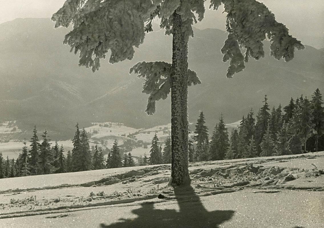 Winter on Gubałówka Mount