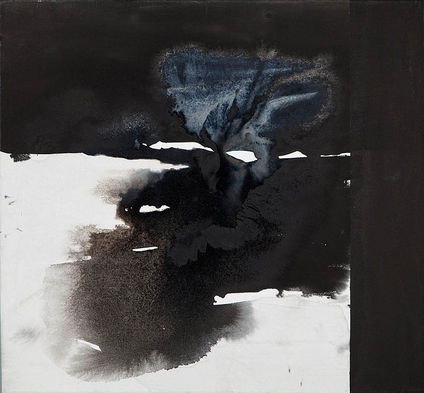 bez tytuły (ROOTED), 2011