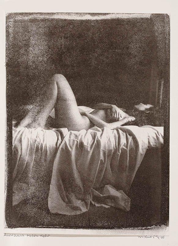 Anatomia melancholii, 2006 r.