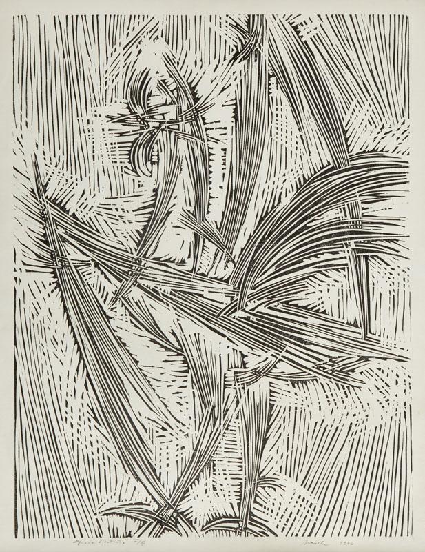 Kogut, 1966 r.