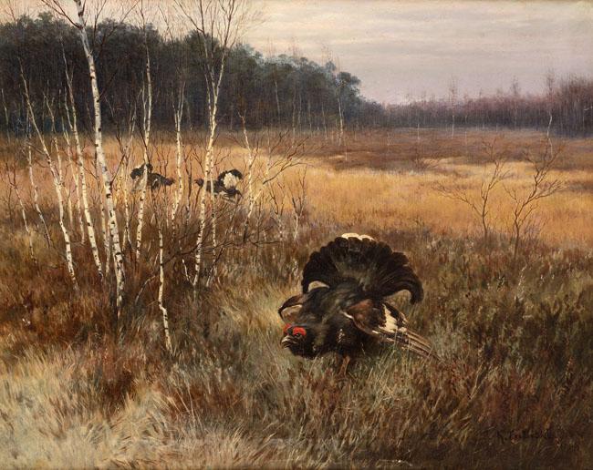 TOKUJĄCE GŁUSZCE, 1906