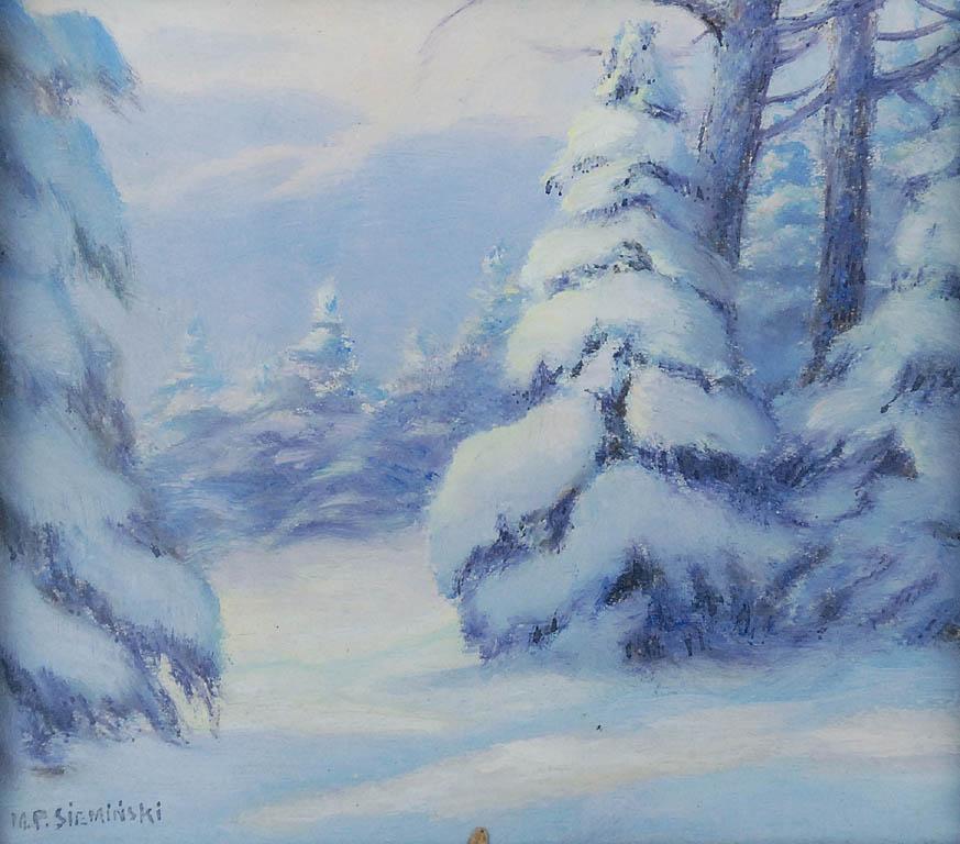 W śnieżnym stroju