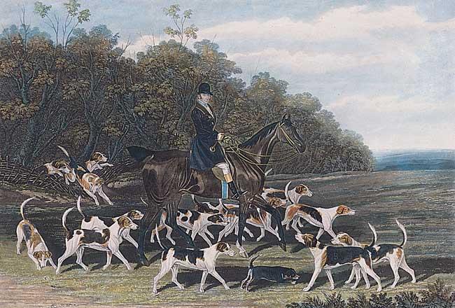 Książę Beaufort z psami na swoim ulubionym koniu, Londyn 1857