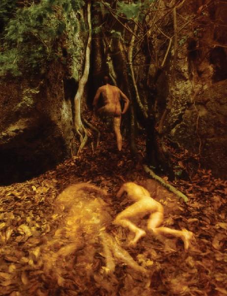 Las utraconych pragnień IV, 1996/2009