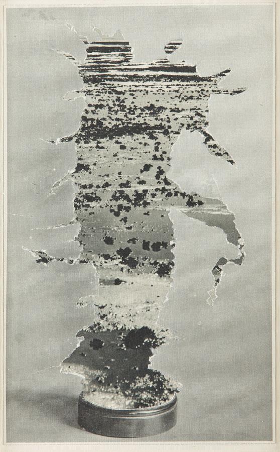 Kompozycja z kaktusem, 1960 r.