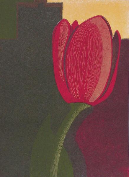 Czerwony tulipan (2001)