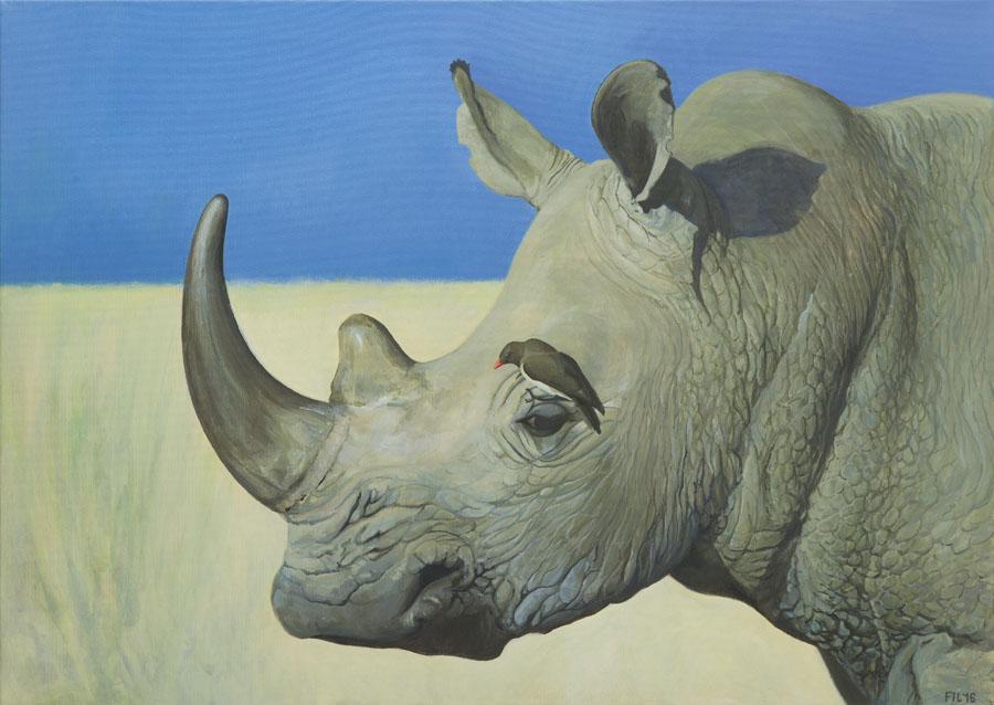 Nosorożec, 2016 r.