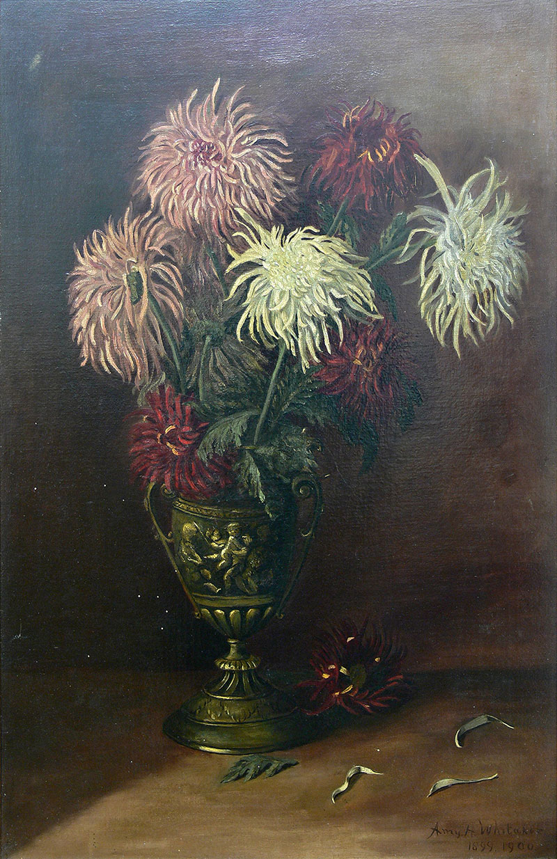 Chryzantemy, l. 1899-1900