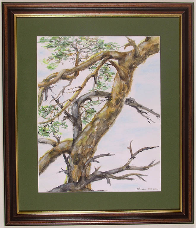 Drzewo, którego już nie ma, 2006