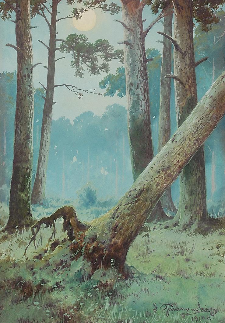 Leśny nokturn, 1914