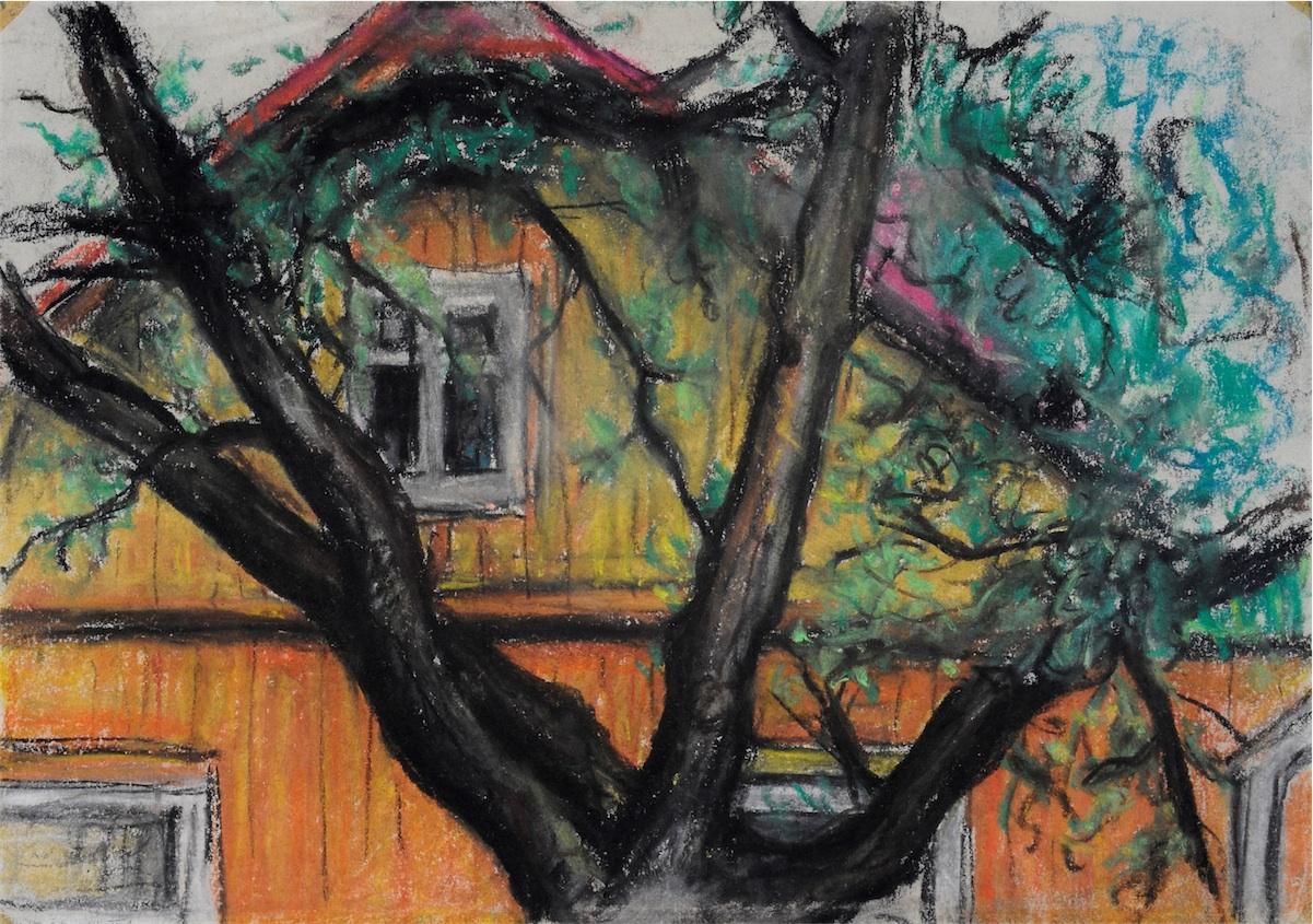 Przydomowe drzewo