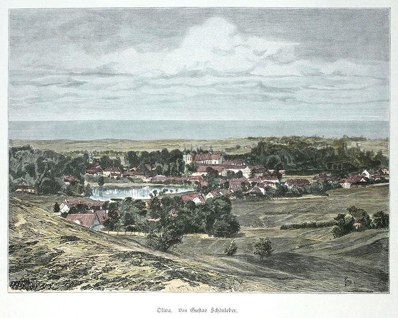 Oliva. Von Gustav Schönleber