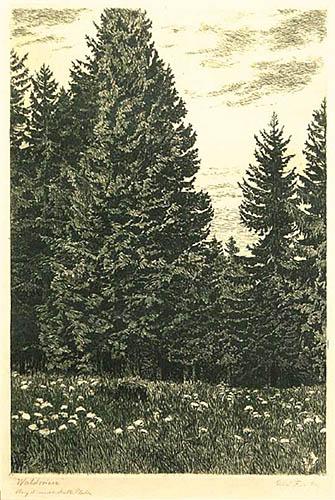 Lena łąka, 1924