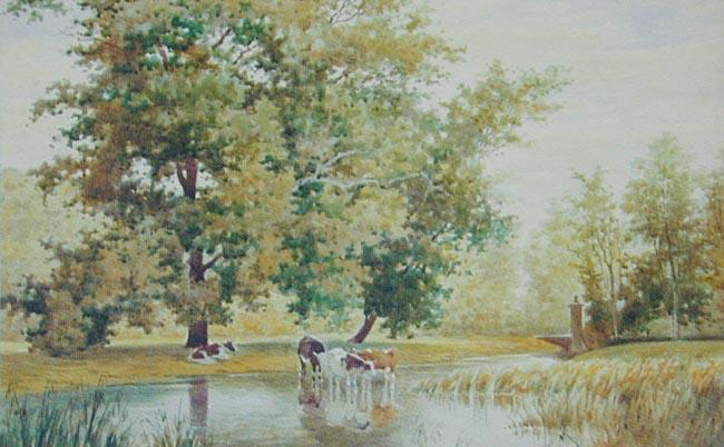Krowy u wodopoju