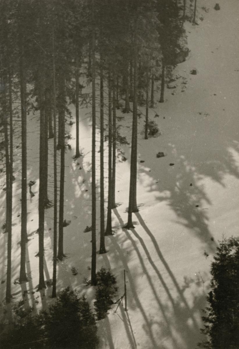 Winter (Zakopane)