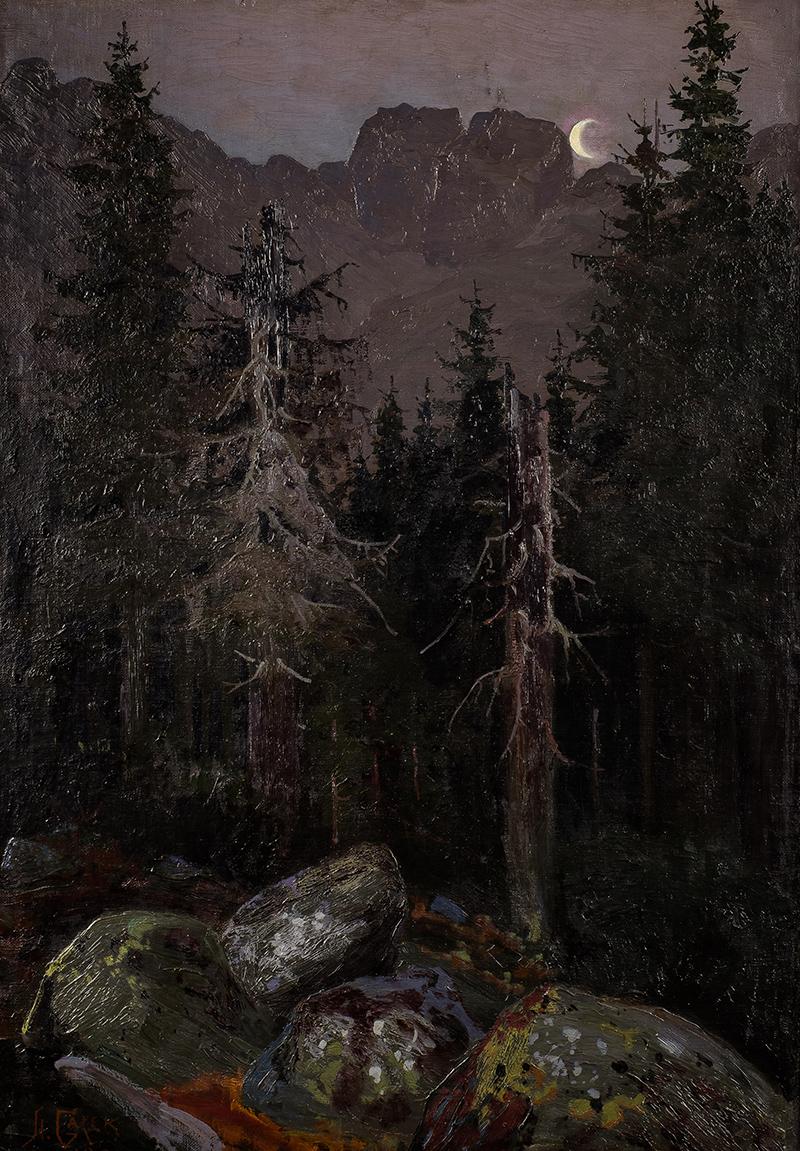 Widok na Kozie Wierchy, 1901 r.
