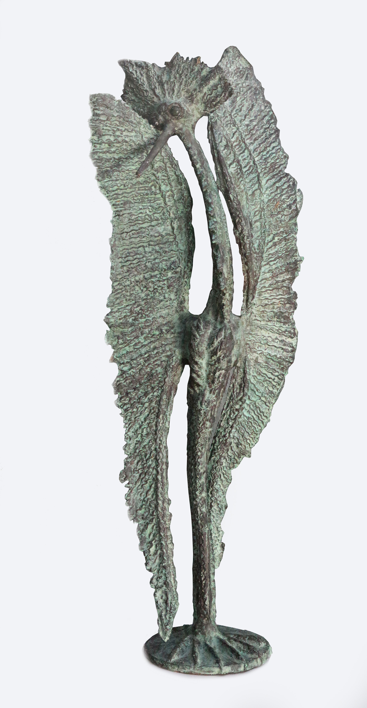 Ptak mazurski