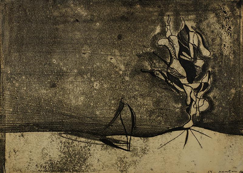 Incognito, 1954 r.