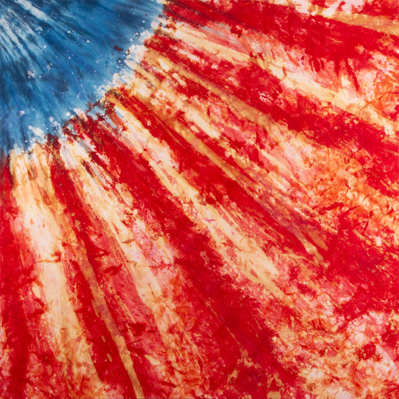 Bez tytułu (Flag 8), 2012 r.
