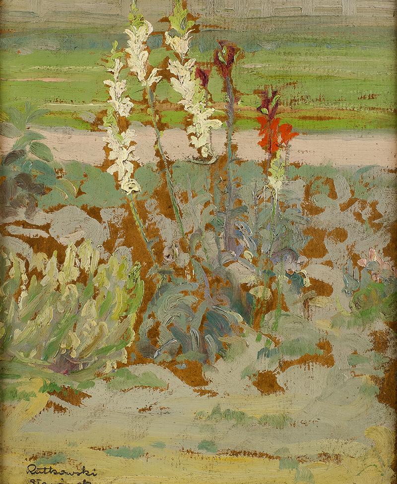 Kwiaty w ogrodzie w Sławinku
