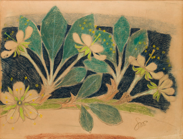 Kwiat wiśni, 1902-1903