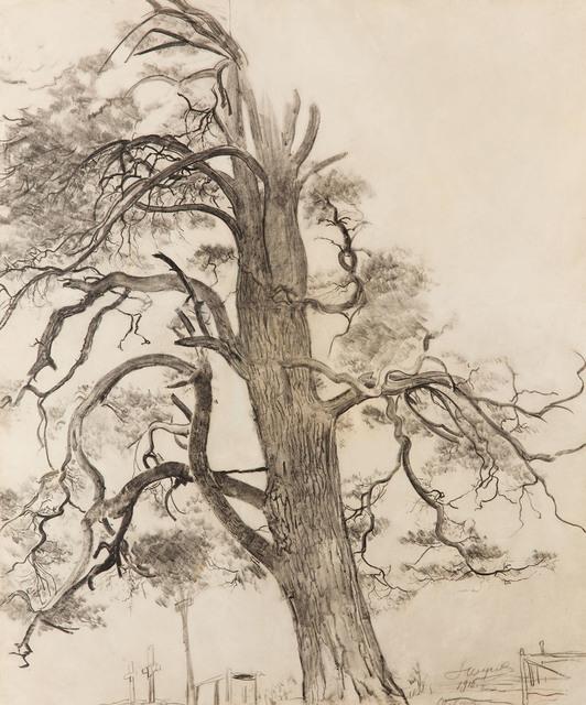 Sosna i mogiły, 1916