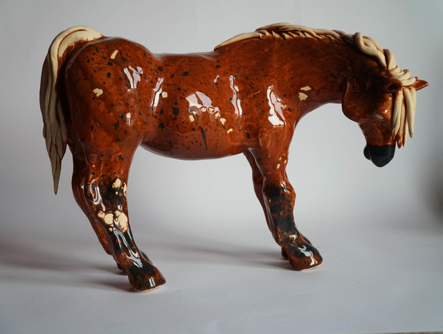 Koń rudy, 2019