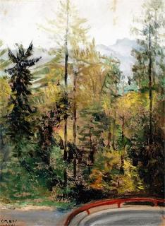 Drzewa – widok serpentyn drogi do Szczawnicy, 1961