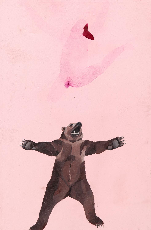 Niedźwiedź, 2007