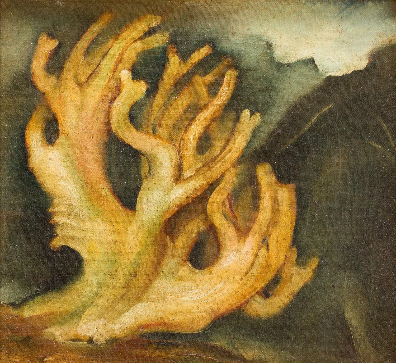 Żółty koral, około 1930
