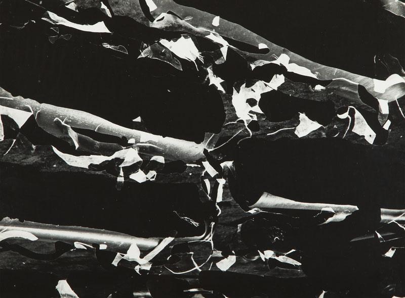 """""""Fotogram 32/57"""", 1957"""