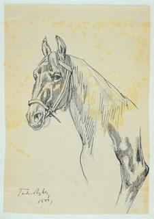 Szkic głowy konia i fragment nogi konia, 1881 (?)