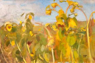 Słoneczniki, 1907