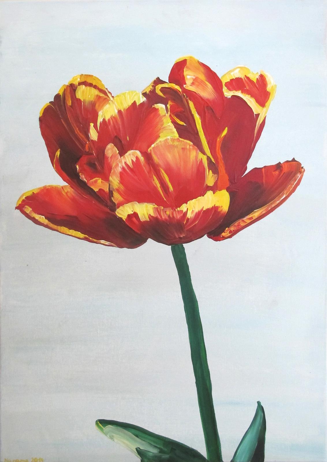 90. Tulipan 41, 2019