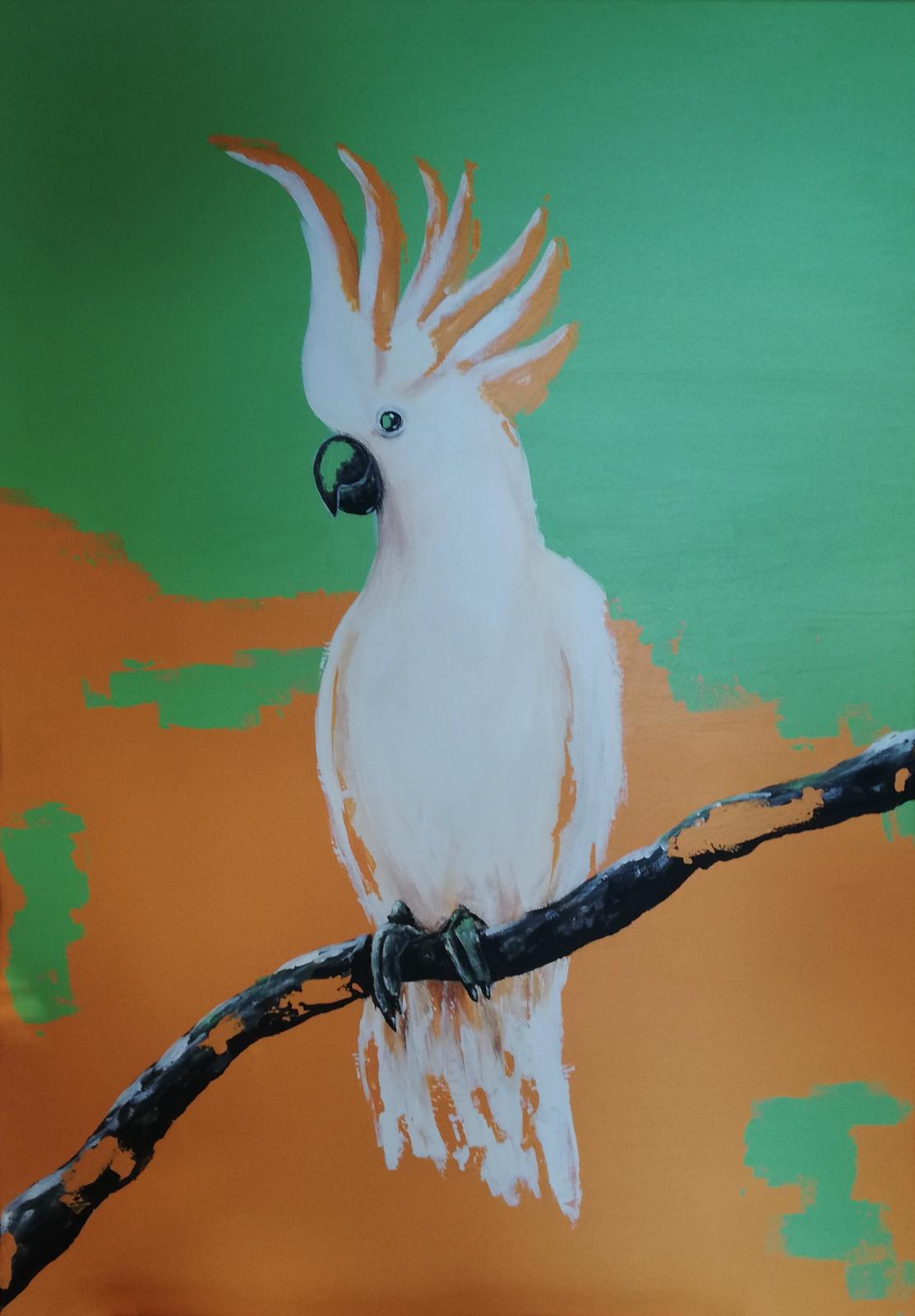 Kakadu, 2020