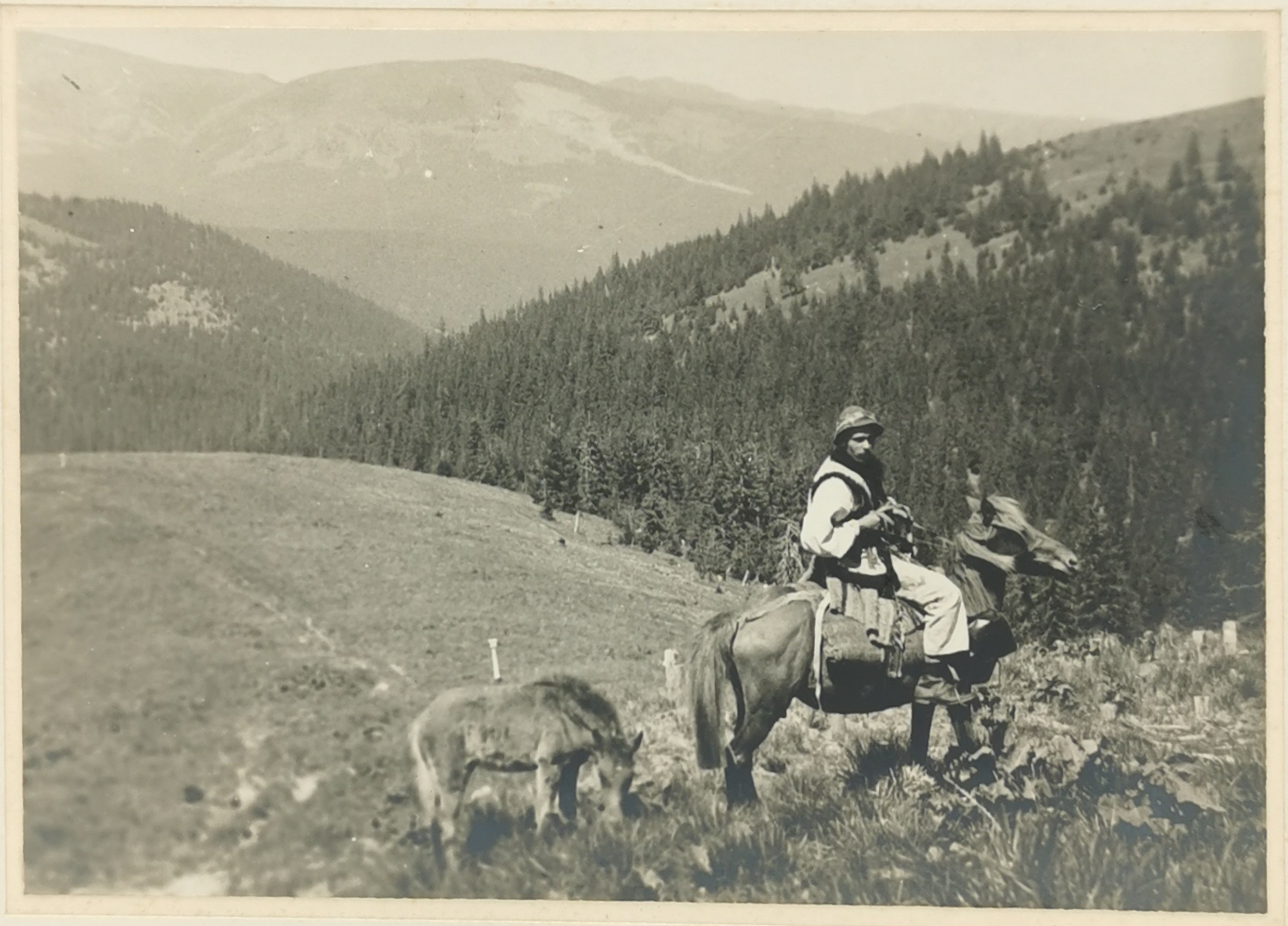 Hucuł na koniu na tle gór