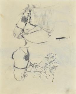 Studia głowy konia w uprzęży, ok. 1900