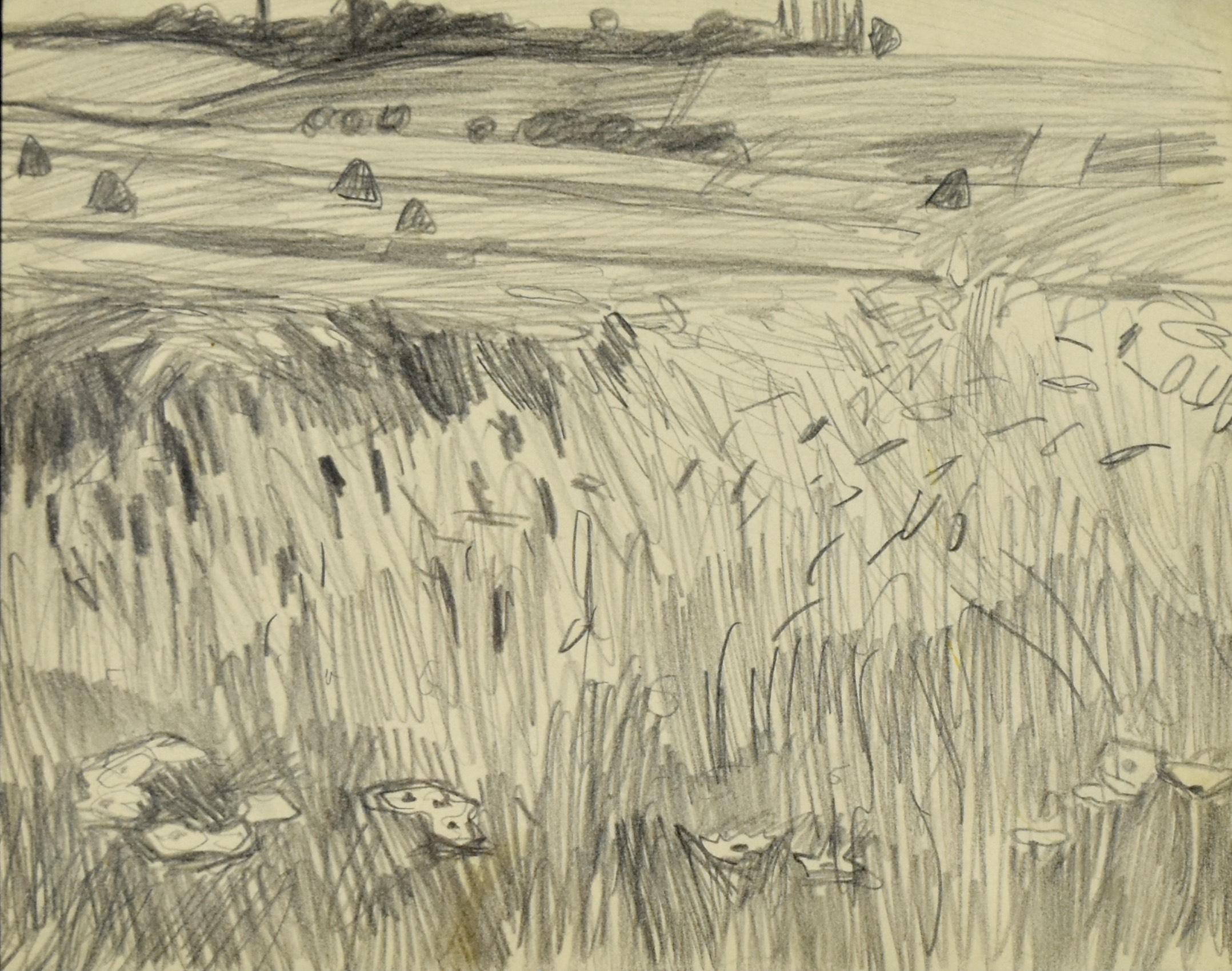 Podkrakowskie pola, ok. 1908