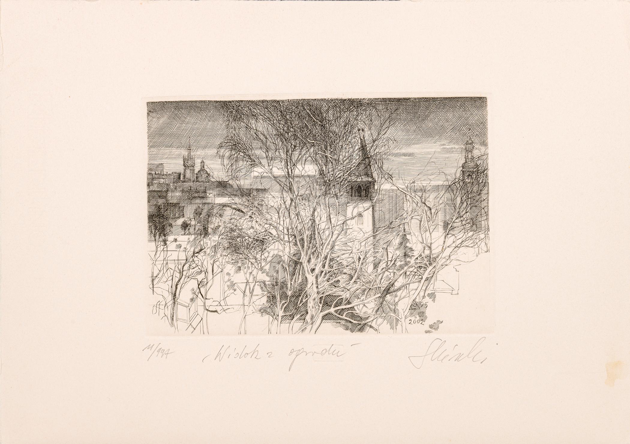 Widok z ogrodu, 2002