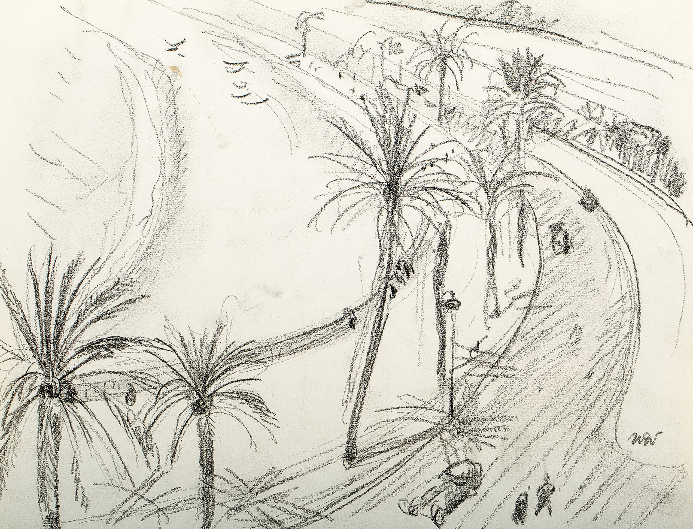 Ulica z palmami