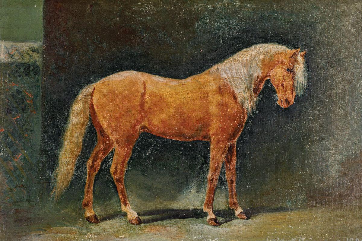 KOŃ, 1889