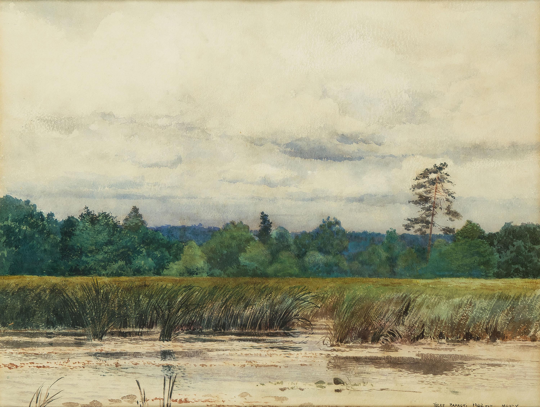 Mokradła w Mrozach, 1902 r.