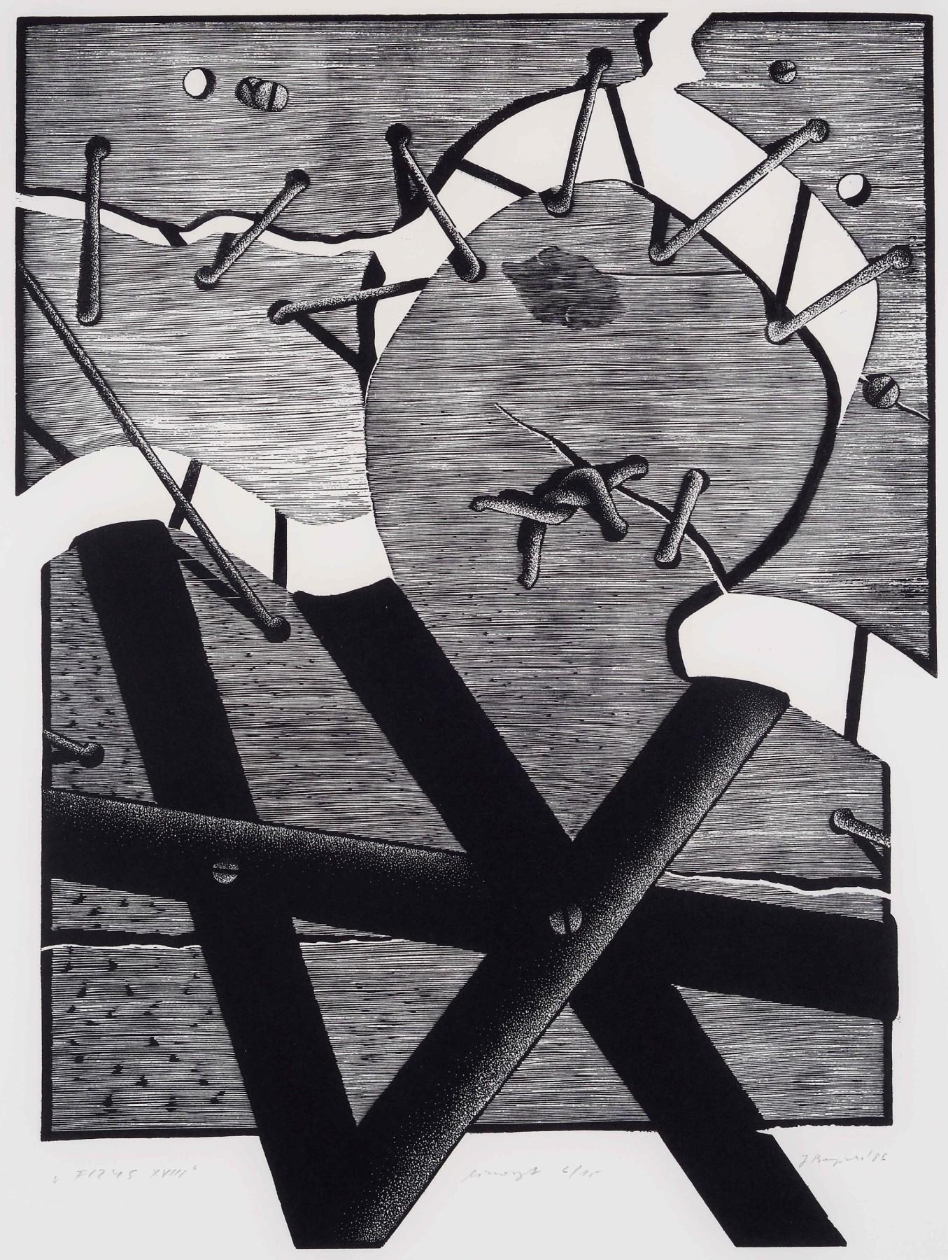Fizys XVIII, 1986