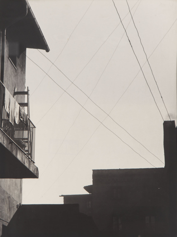 """""""Zakratowane niebo"""", z cyklu: """"Dachy"""", z serii: """"Dokumentacje 1950-1978"""" , 1953"""
