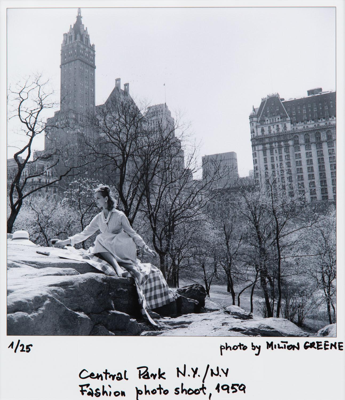 """Central Park"", 1959/2020"