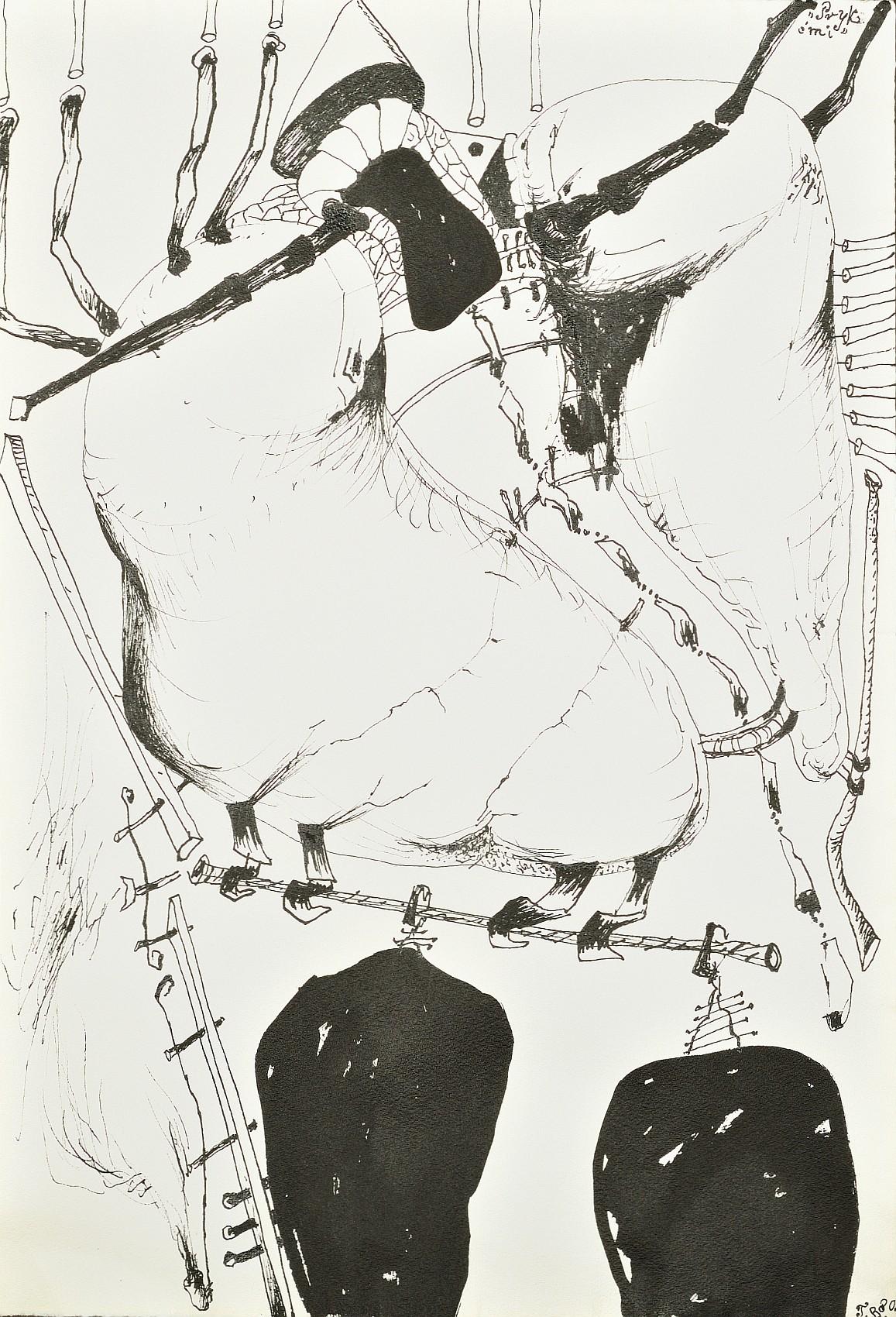 Pryk ćmi, 1980