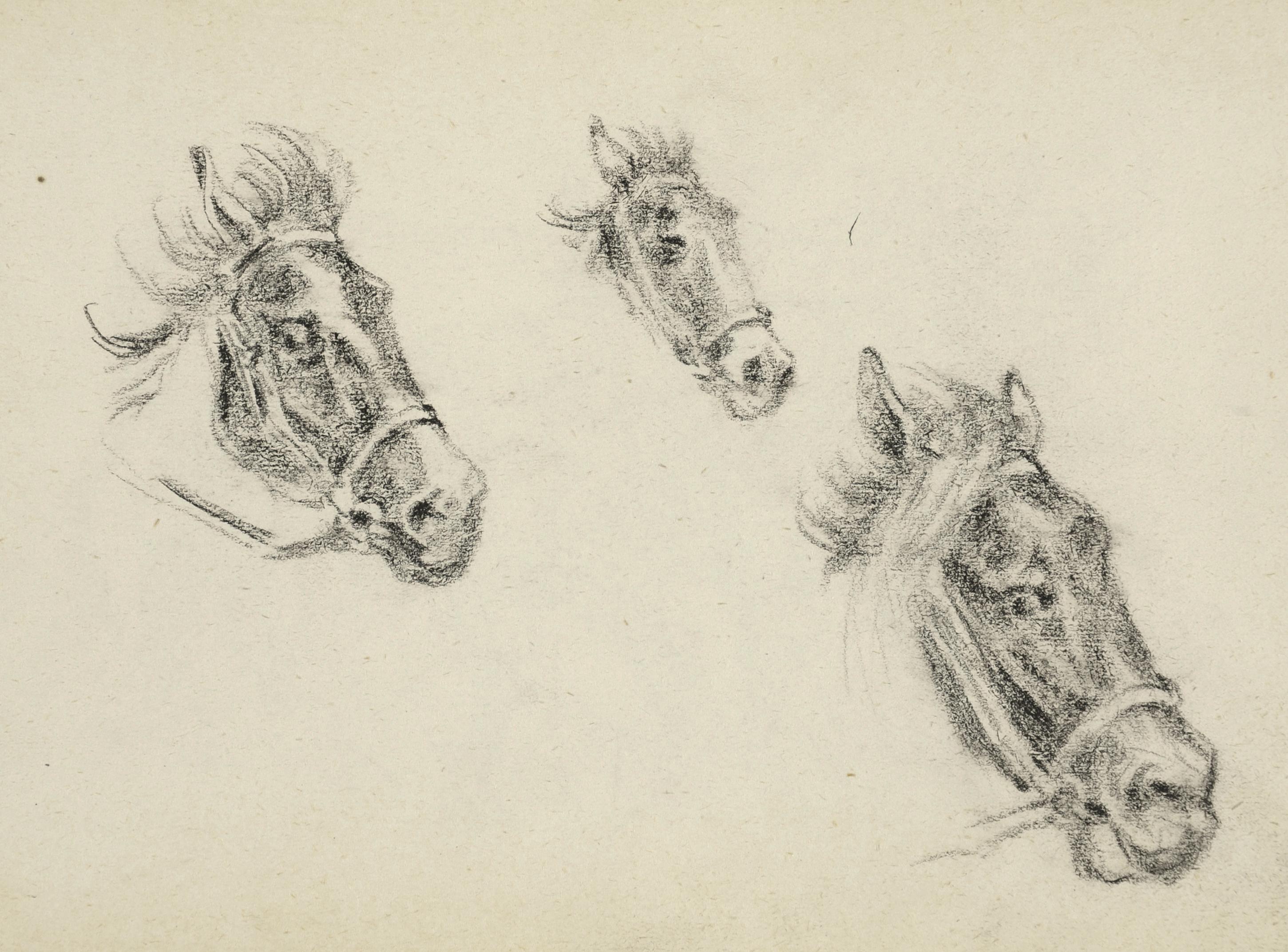 Szkice głów końskich