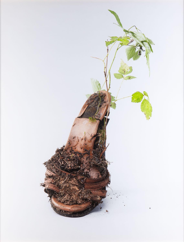 """Z cyklu 'Centrum dla żywych rzeczy', """"Środowisko po-obuwnicze"""", 2017"""
