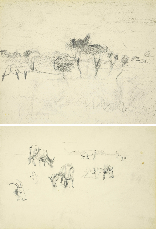 Szkice pasących się krowy i kozy, 1907
