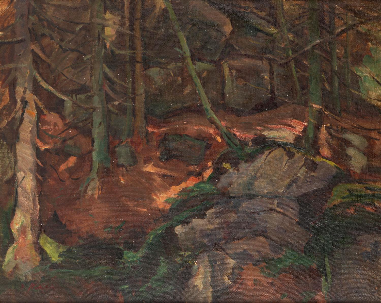 Pejzaż leśny ze Szklarskiej Poręby